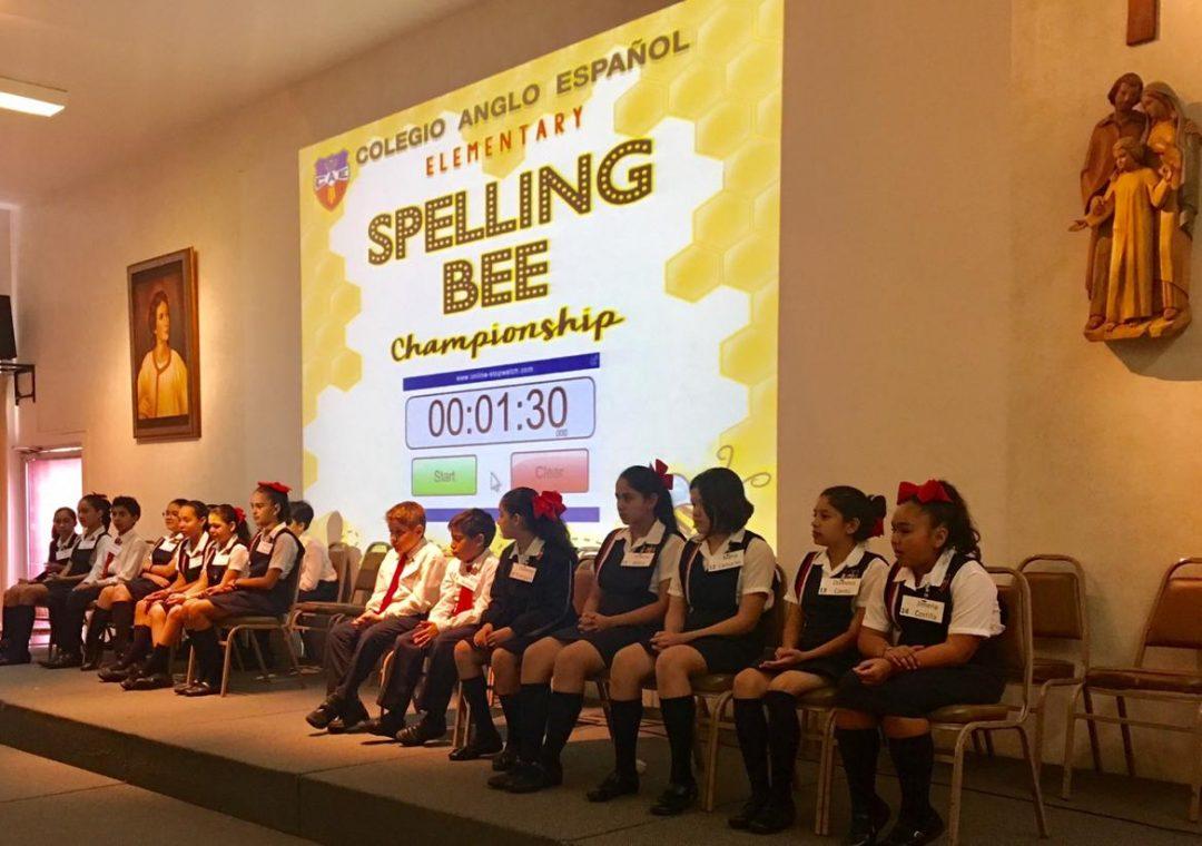 SPEELING BEE PRIMARIA